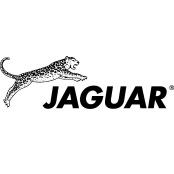 Jaguar Kammen